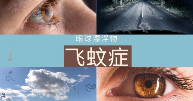 眼球漂浮物 – 飞蚊症